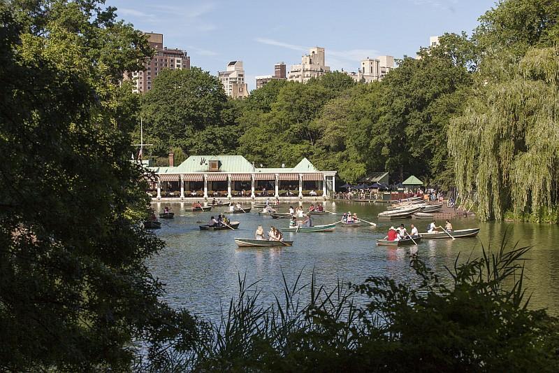 Central Park, Manhattan (© NYC  Company/Tagger Yancey IV)