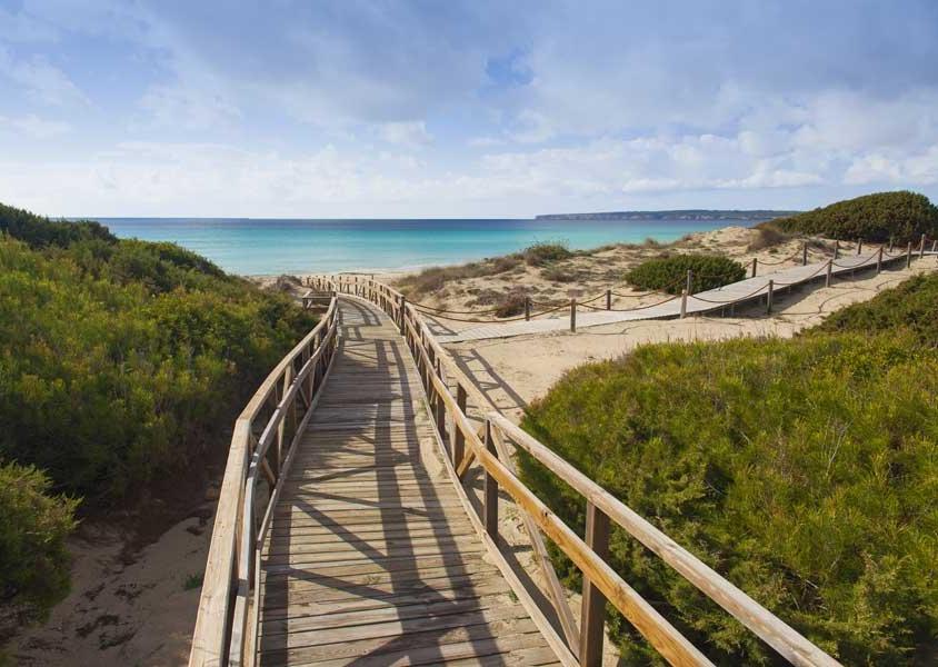 Uno degli ingressi alla spiaggia Migjorn, 5 chilometri di sabbia finissima (PH Turisme de Formentera)