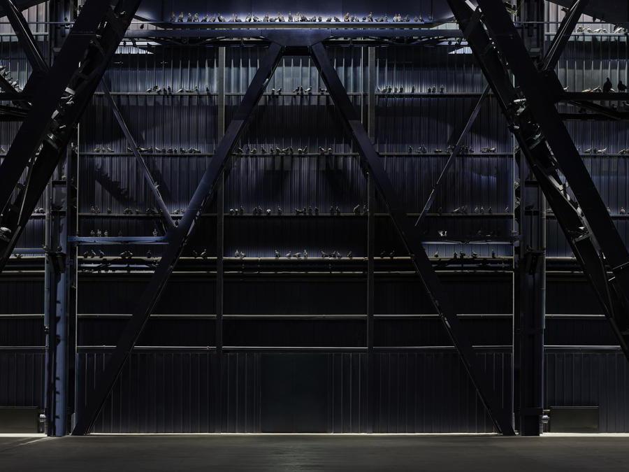 Maurizio Cattelan, Ghosts, 2021. Veduta dell'installazione, Pirelli HangarBicocca, Milano, 2021. Piccioni in tassidermia. Dimensioni ambientali. Courtesy l'artista e Pirelli HangarBicocca, Milano. Foto: Agostino Osio.