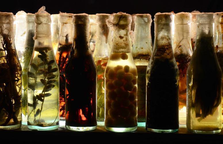 José Yaque «Tumba abierta - series »  473 bottiglie in vetro, acqua, residui vegetali 2017   . Gentile concessione dell'artitsta e della galleria Continua di San Gimignano