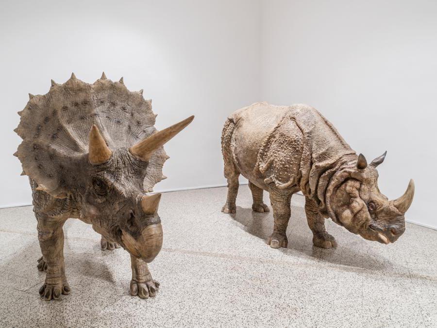 Sun Yuan & Peng Yu  «I Didn't Notice What I am Doing » 2012  sculture in fibra di vetro: scultura di triceratopo, scultura di rinoceronte.Per gentile concessione dell'artitsta e della galleria Continua di San Gimignano