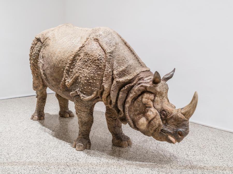Sun Yuan & Peng Yu  «I Didn't Notice What I am Doing » 2012  sculture in fibra di vetro:  scultura di rinoceronte. Per gentile concessione dell'artitsta e della galleria Continua di San Gimignano