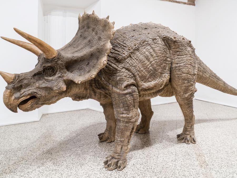 Sun Yuan & Peng Yu  «I Didn't Notice What I am Doing » 2012  sculture in fibra di vetro: scultura di triceratopo. Per gentile concessione dell'artitsta e della galleria Continua di San Gimignano
