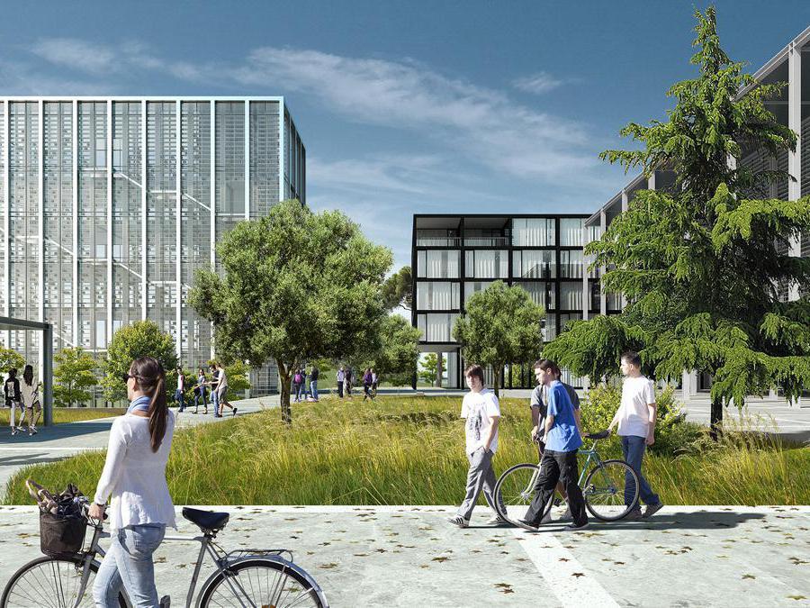 Un rendering dell'ampliamento del campus dell'Ucbm (Università Campus Bio-Medico) assegnato a un team guidato dagli architetti romani dello studio Labics, con i tedeschi Topotek1 esperti nella progettazione di paesaggi e spazi urbani