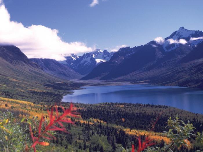 Alaska: l'odissea bianca di Richard Proenneke