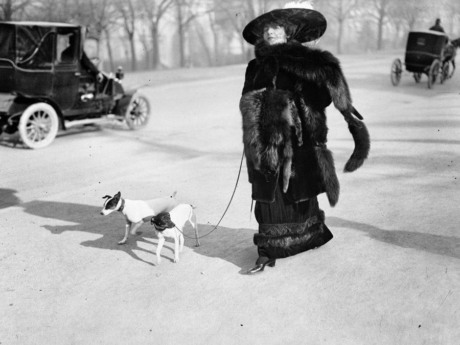 """Anna la Pradvina, detta anche """"la signora con le volpi"""" Avenue du Bois, Paris, 1911"""