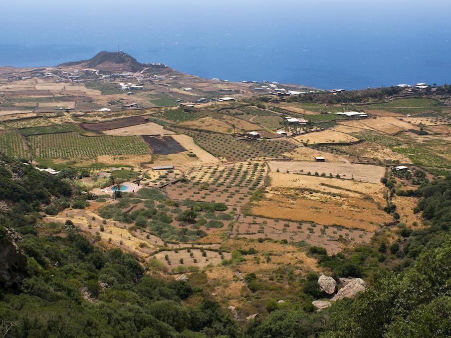 L'isola di Pantelleria dove si coltiva la vite di Zibibbo ad alberello. (Marka)