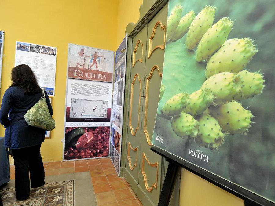 2012 -  Pioppi frazione di Pollica (Sa),  il Museo del Mare e della Dieta Mediterranea. (Agf)