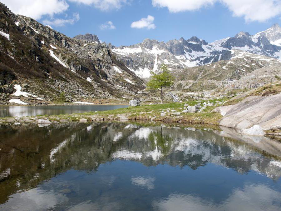 Lago di Cornisello,Parco Naturale Adamello Brenta, Trentino-Alto Adige (Adobestock)