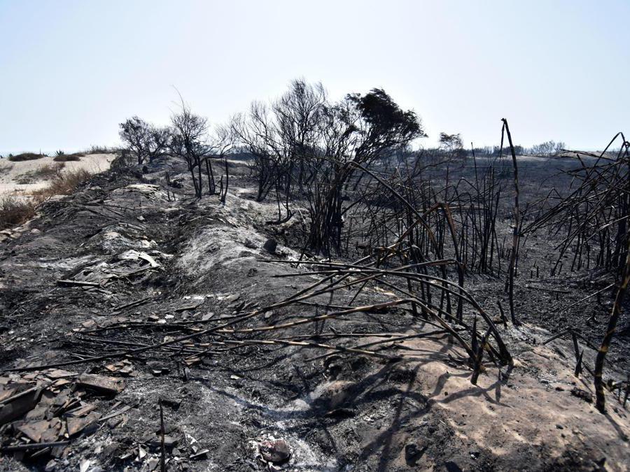 Stabilimenti balneari distrutti dalle fiamme vicino a Catania. (Ansa / Orietta Scardino)