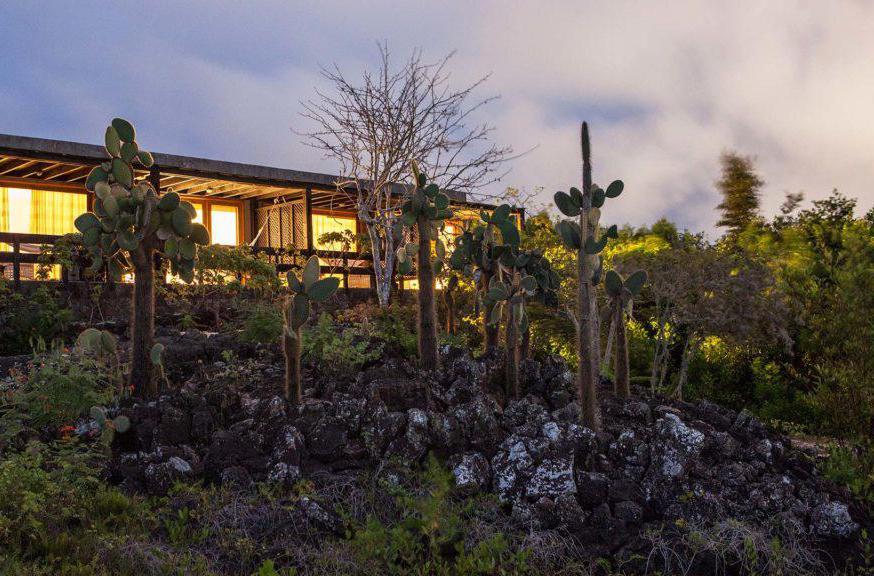 Finch Bay - Galapagos