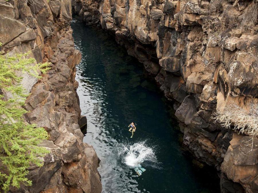 Finch Bay- Galapagos. Le escursioni
