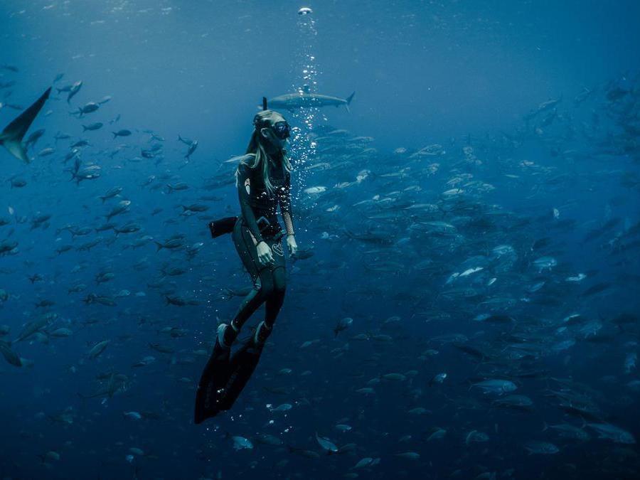 Finch Bay- Galapagos. Snorkeling