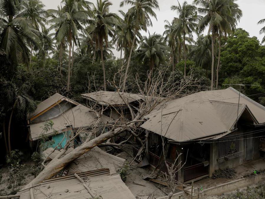 Una casa coperta di cenere viene danneggiata da un albero caduto a Lemery, città di Batangas, Filippine. REUTERS/Eloisa Lopez