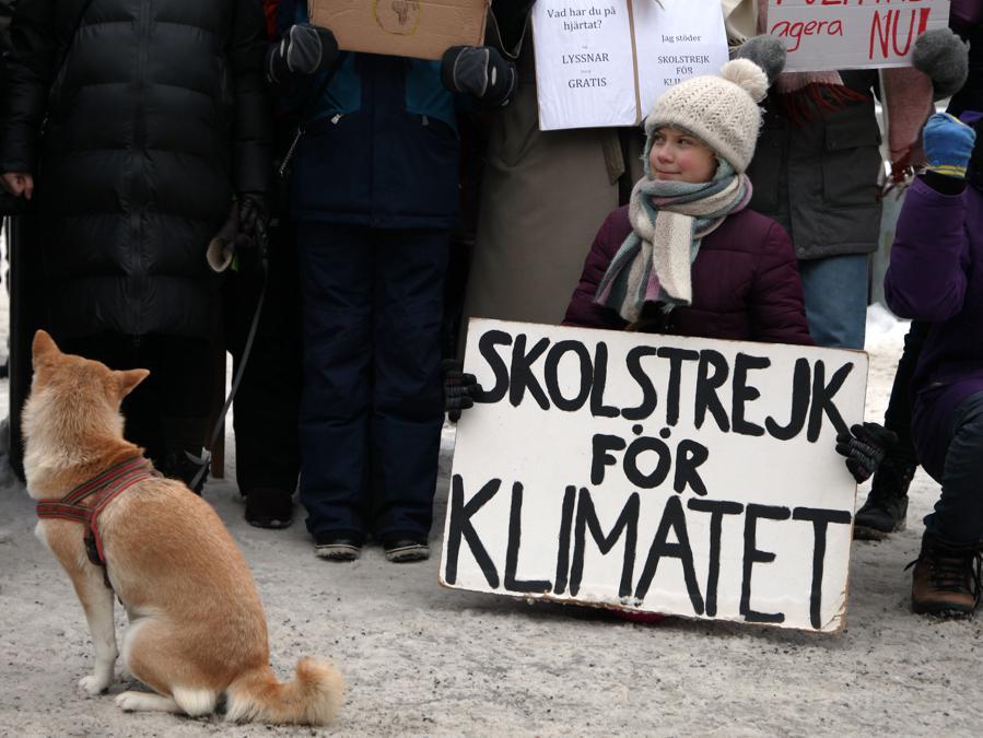 Greta Thunberg  (Ap/Steffen Trumpf)