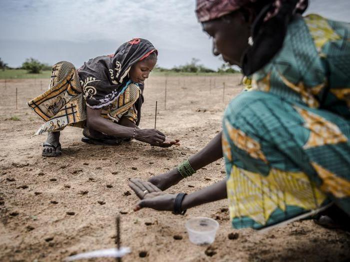 Il cambiamento climatico nel Sahel