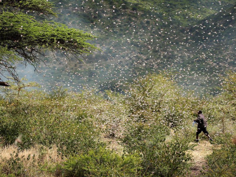 Jijiga, Somali,  Etiopia (Reuters)