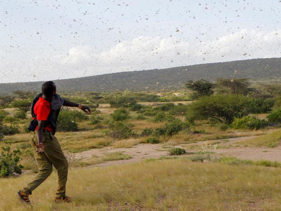 Nakwamuru, Samburu, Kenya (Reuters)