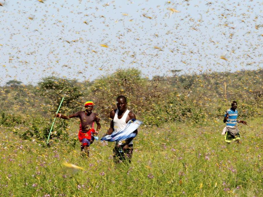 Lemasulani, Samburu, Kenya (Reuters)