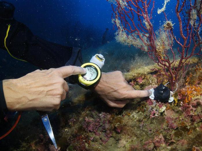 I sensori in fondo al mare