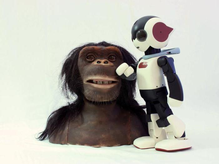 I robot di Io, Robotto