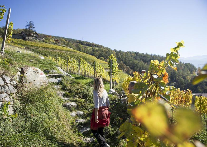 (Brixen Tourismus)