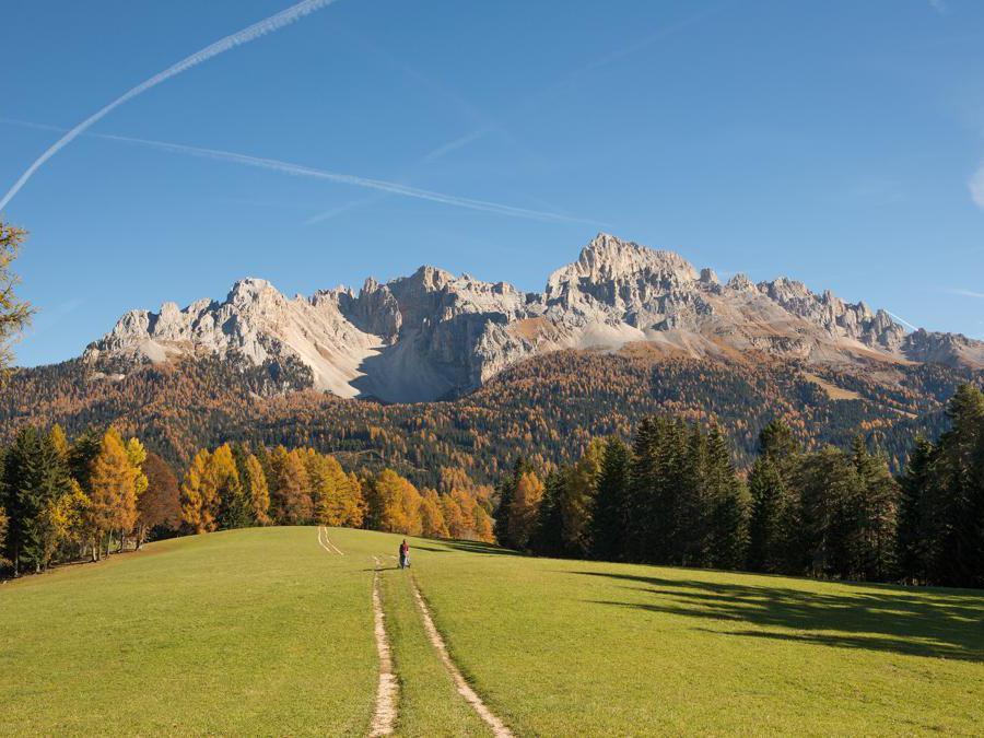 Val d'Ega - Foliage