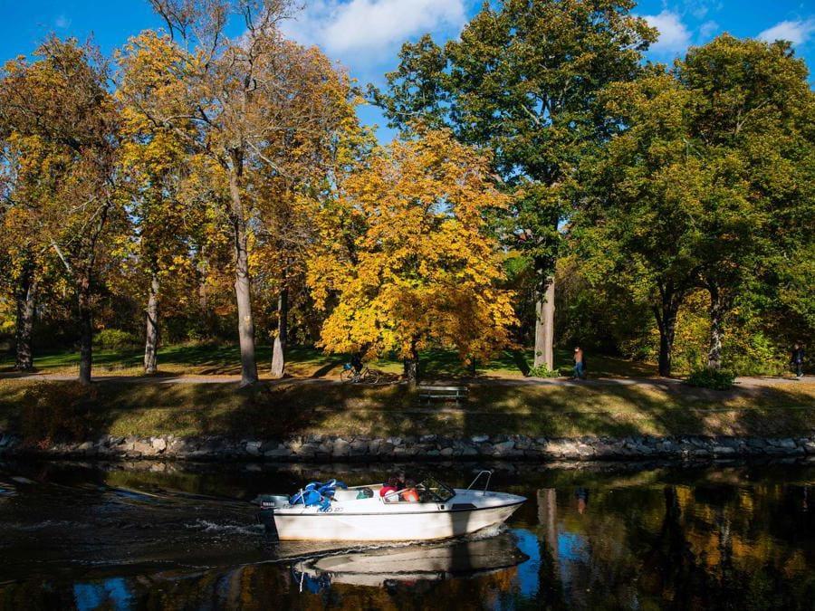 Djurgarden parco cittadino nazionale a Stoccolma,(Photo by Jonathan NACKSTRAND / AFP)
