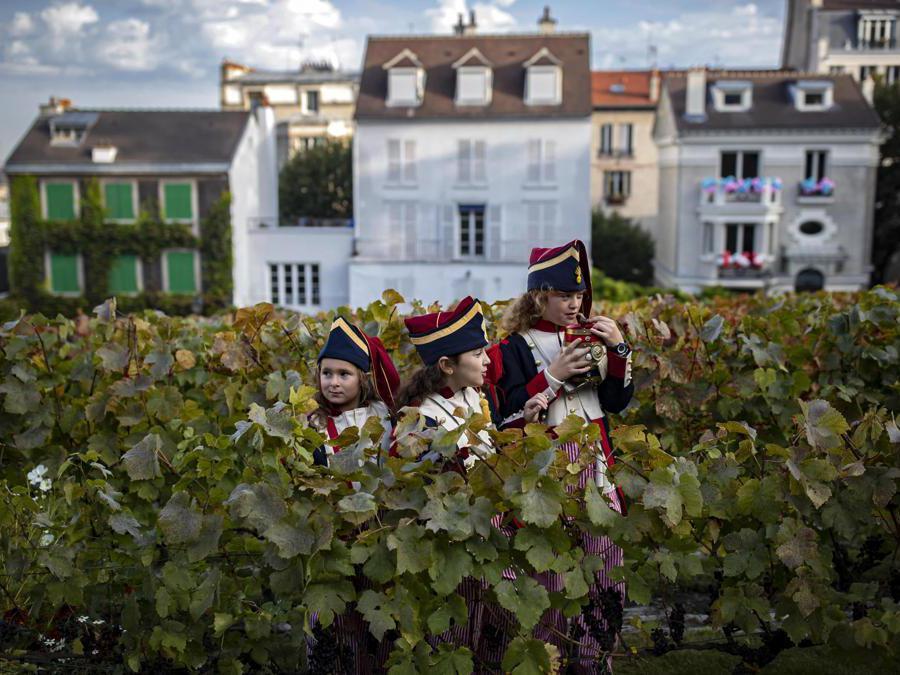 Bambini della Repubblica di Montmartre partecipano alla vendemmia nel Clos de Montmartre(EPA/IAN LANGSDON)