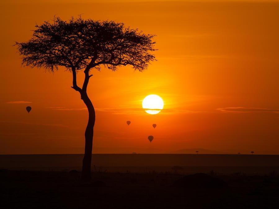 Maasai Mara National Reserve, Kenya. (Common Wikimedia)