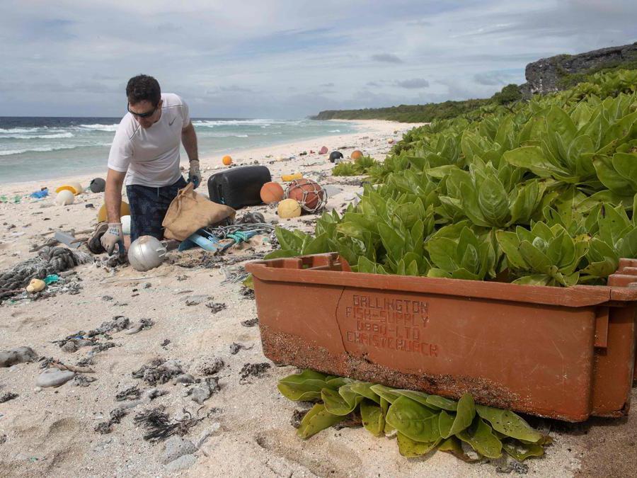 Un membro del team di pulizia della spiaggia mentre raccoglie spazzatura da una spiaggia sull'isola di Henderson. (Photo by Iain McGregor / STUFF / AFP)