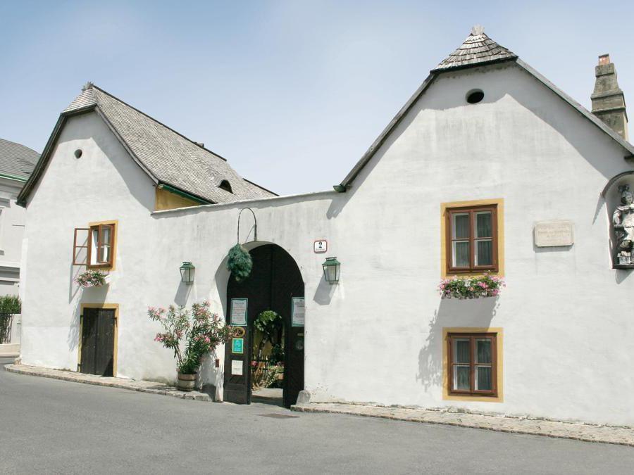 Un locale tipico nelle vicinnaze del museo dedicato a Beethoven -Mayer am Pfarrplatz